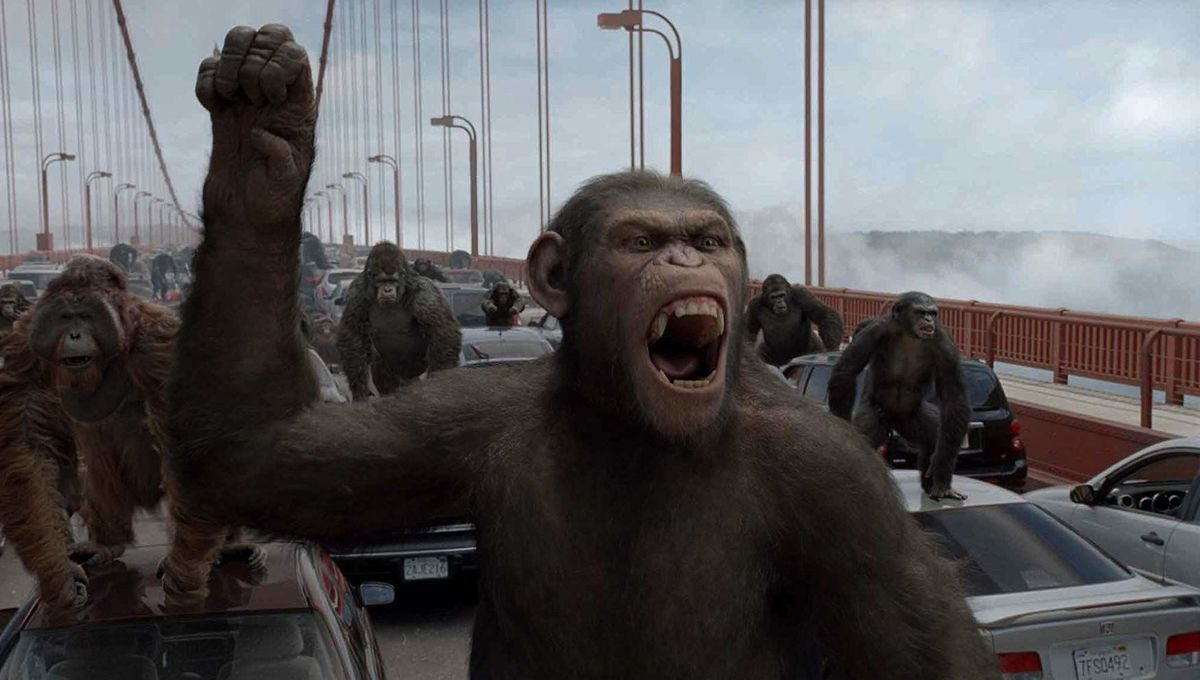 Twitter prepares for a real Planet of the Apes as the coronavirus angers  monkeys