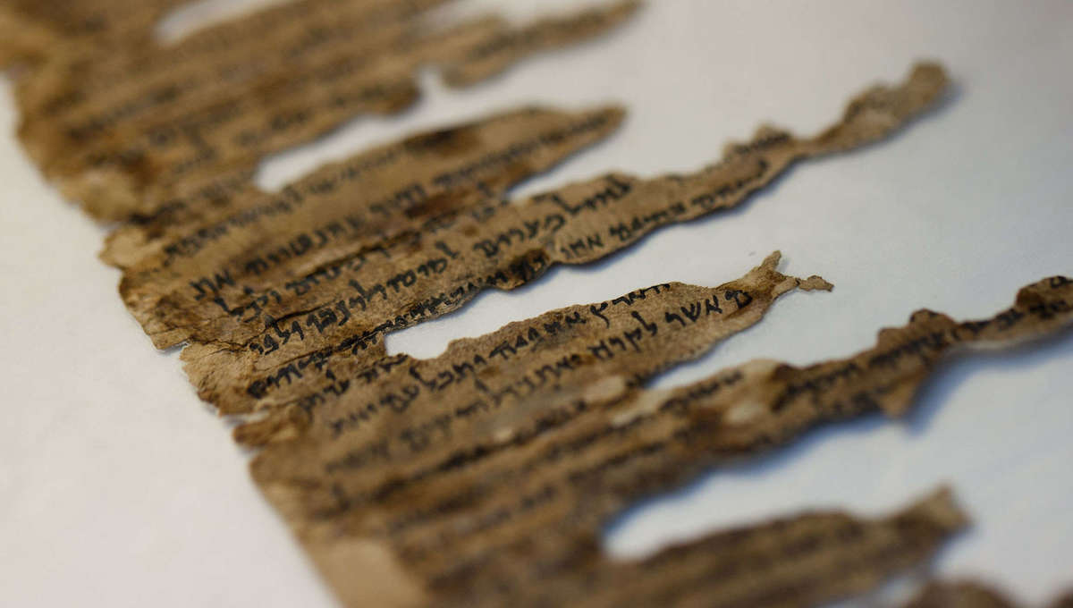 DNA being used to reassemble long-broken fragments of the Dead Sea scrolls back together