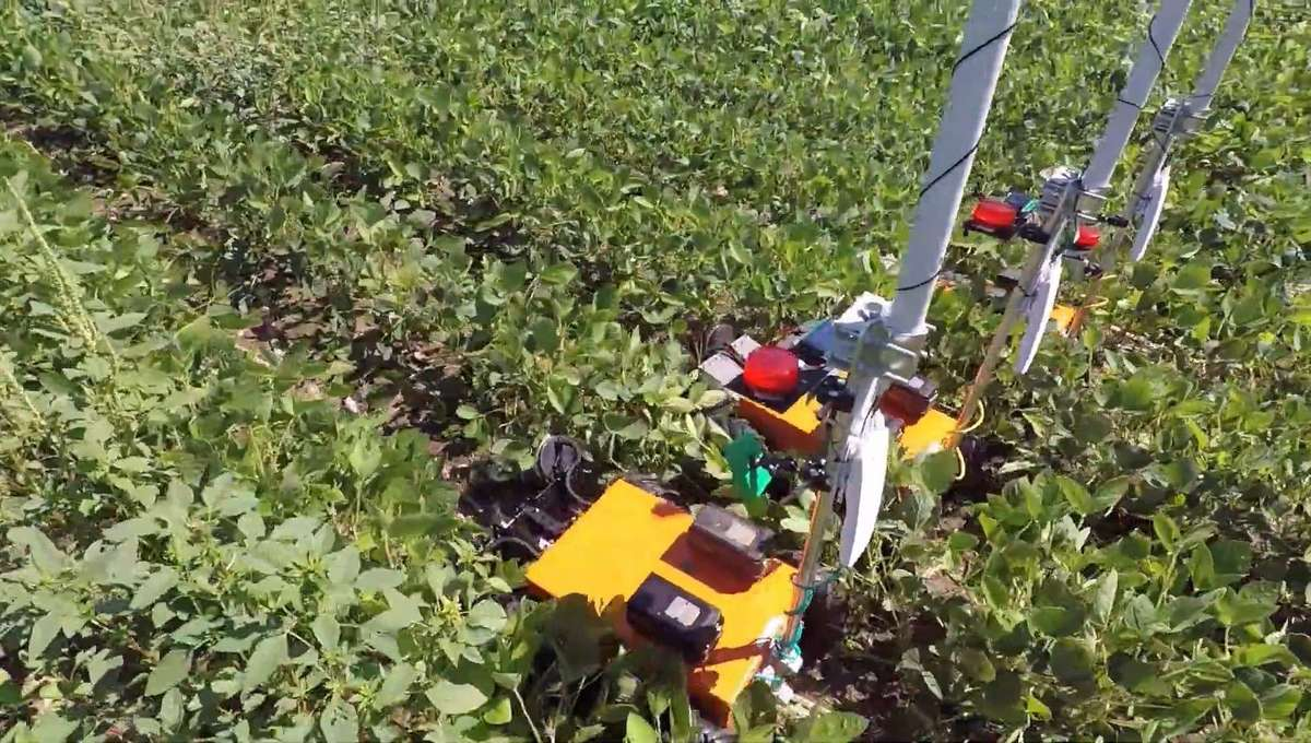 This high-tech farm is managed by a team of pesticide-disavowing robots