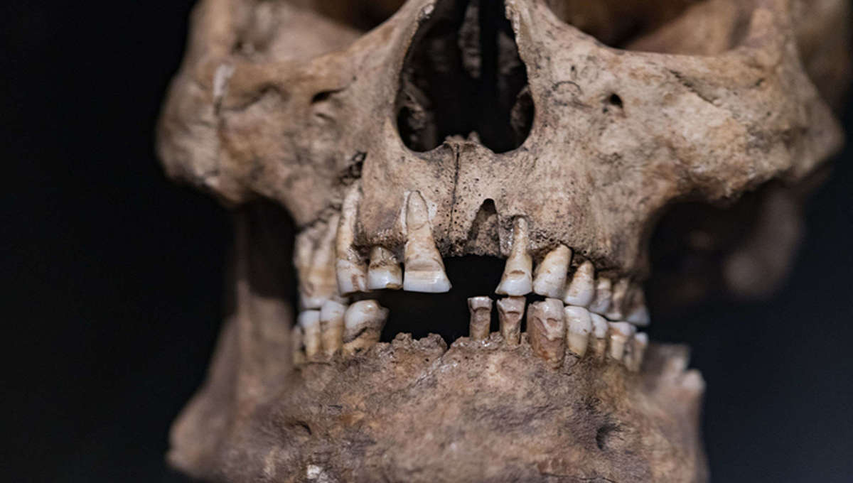 Ancient human remains have ended up on the black market, but where do they really belong?
