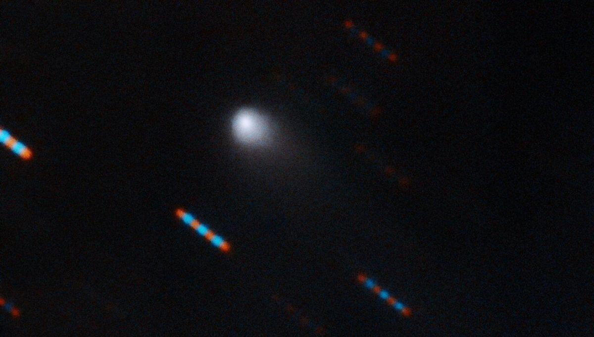 Updates on an alien visitor: The interstellar comet 2I/Borisov