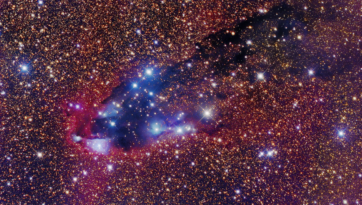 The cometary globule called the Dark Tower, a dark nebula being blasted by radiation from a nearby star cluster. Credit: Robert Gendler
