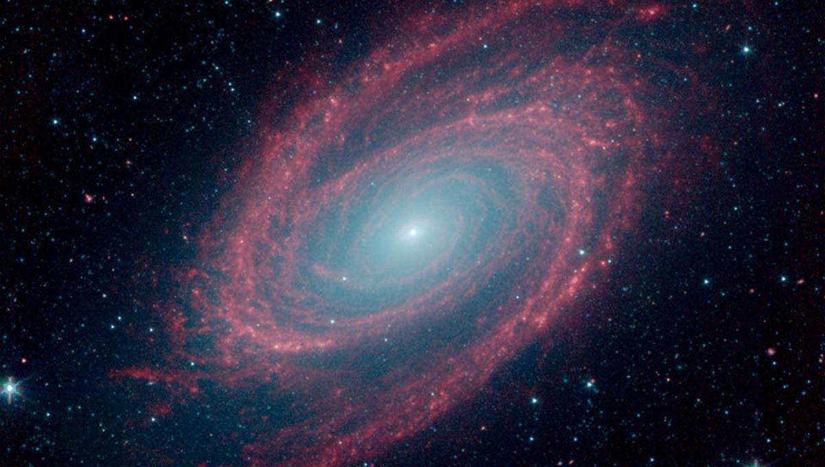 M81: Spiraling dusty galactic heat