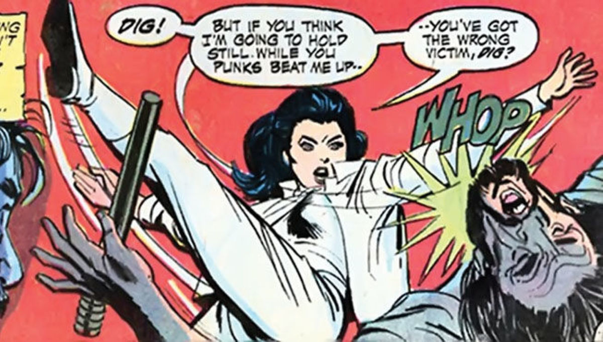Diana Prince Wonder Woman karate