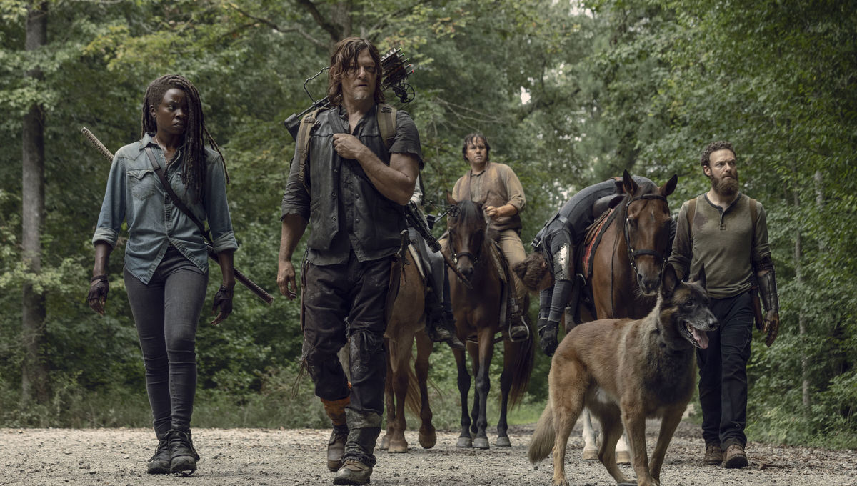 The Walking Dead season 9 spoilers: Michonne star Danai Gurira's exit CONFIRMED