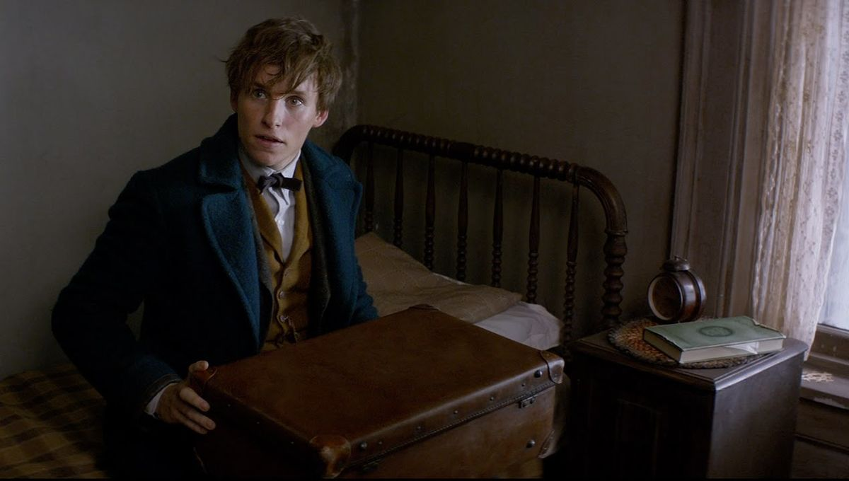 8 reasons why Newt Scamander is the hero we need right now | SYFY WIRE