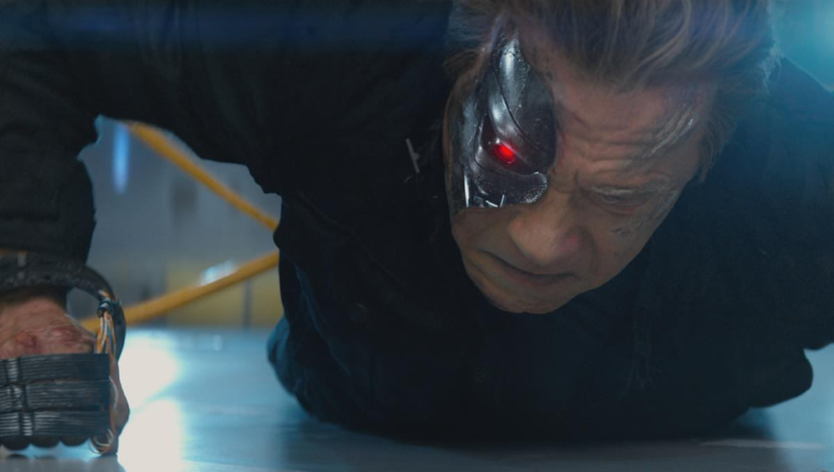 TerminatorGenisys-Arnold_1_0.png