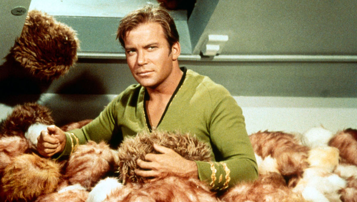 TheTroublewithTribbles.jpg