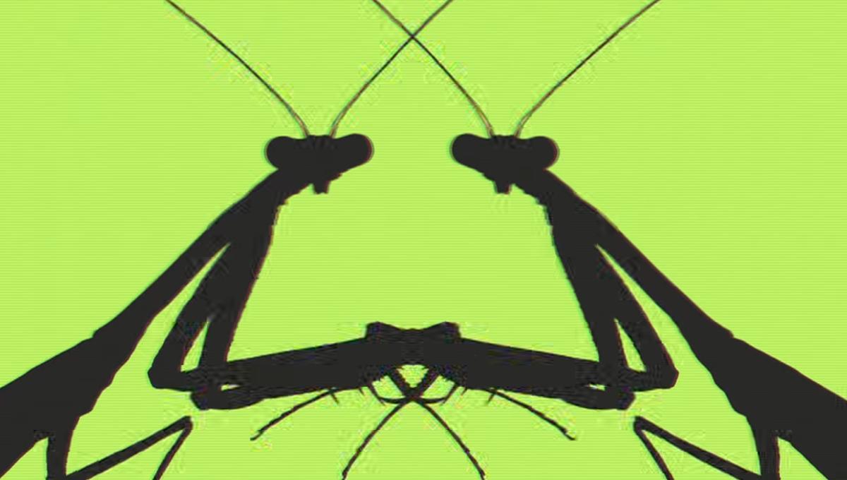 grasshopper_jungle1.PNG