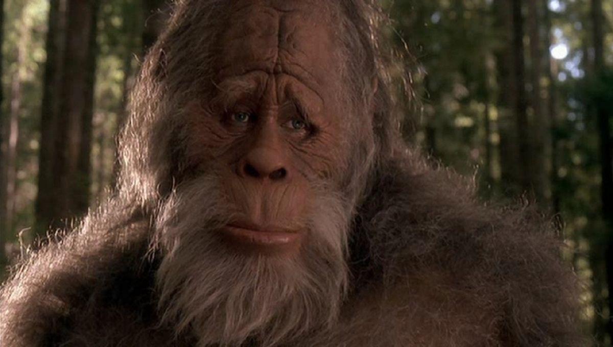 Professional Bigfoot Hunter Claims To Have Killed Sasquatch World