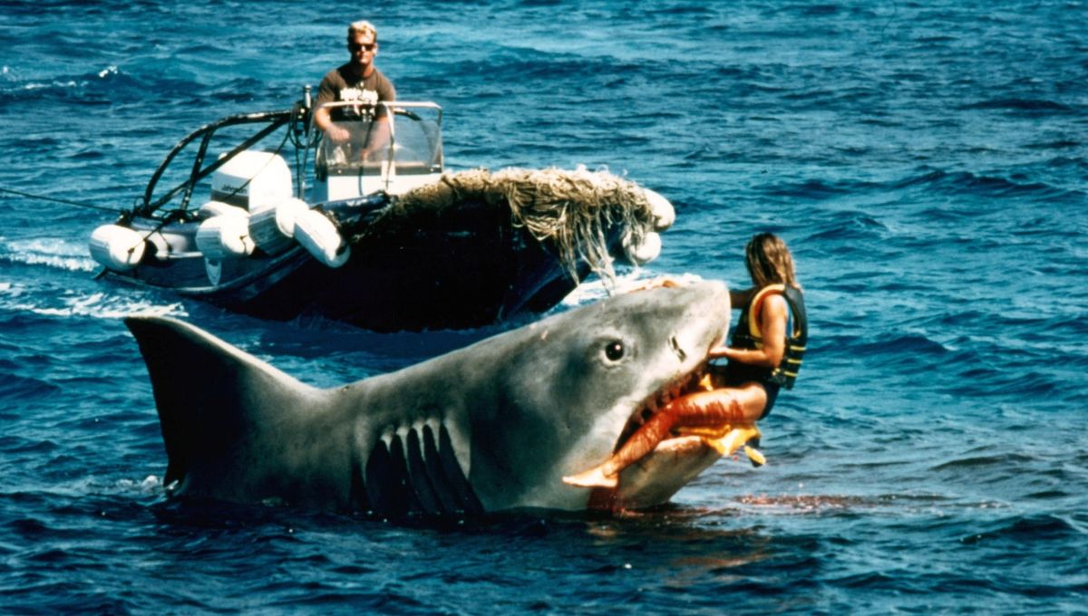 Final surviving Jaws shark will be immortalized in Academy Museum -Blastr