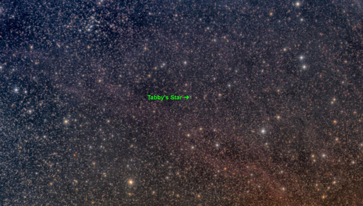 OK, it's still not aliens, but we're finally catching Tabby's Star in the act