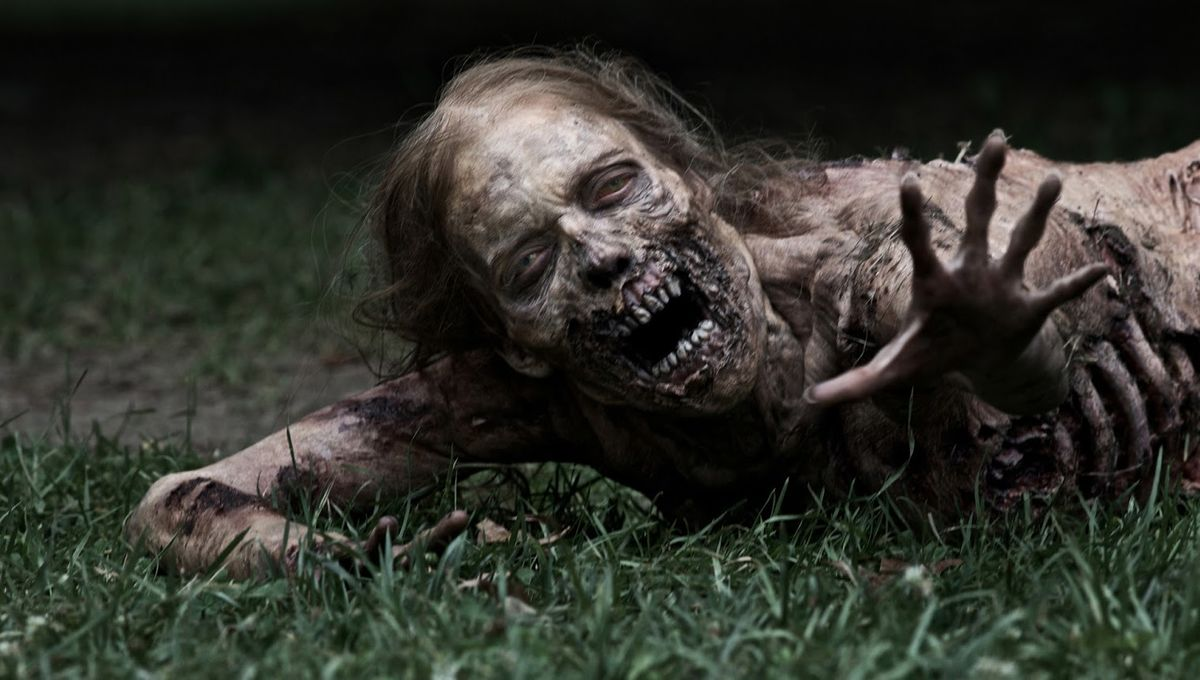 the-walking-dead-.jpg
