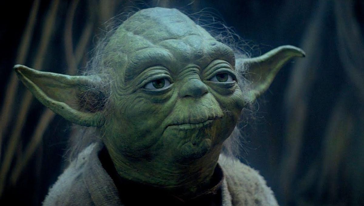 Stuff We Love 2004 Star Wars Novel Yoda Dark Rendezvous Syfy Wire