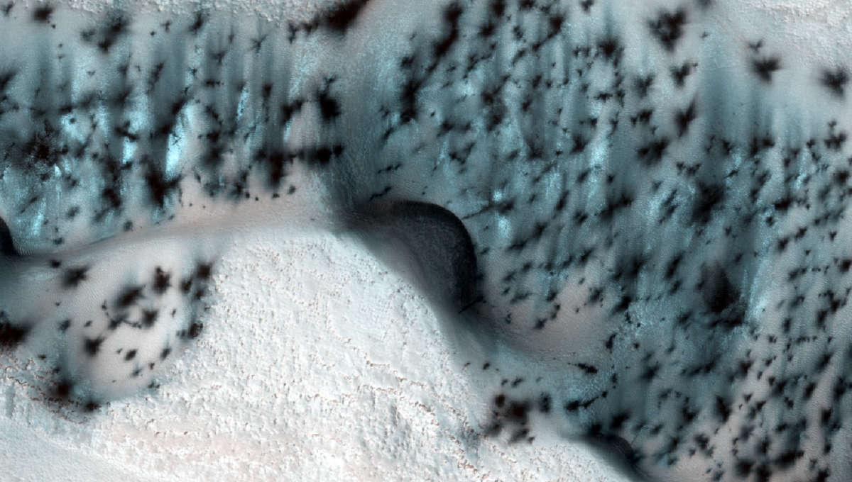 Liz Winter on Mars