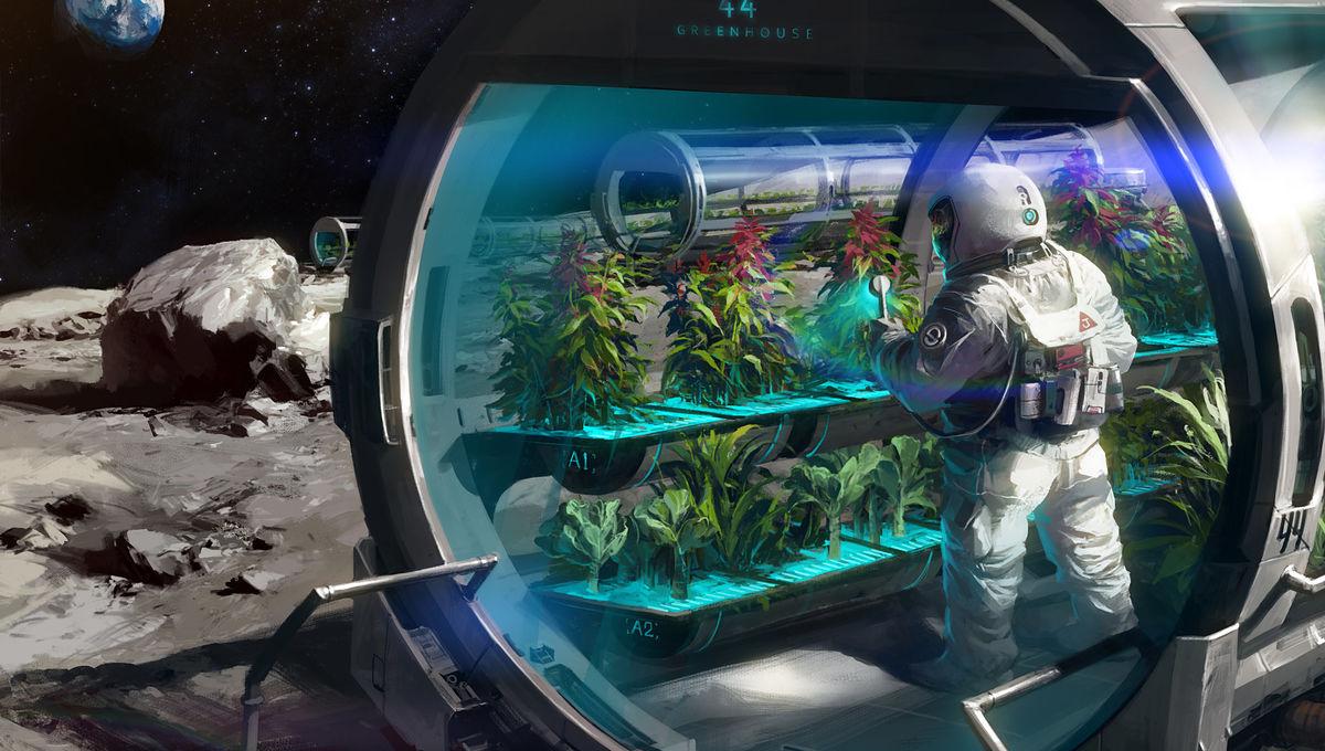 jay-wong-space-farm-on-moon-accomplished.jpg