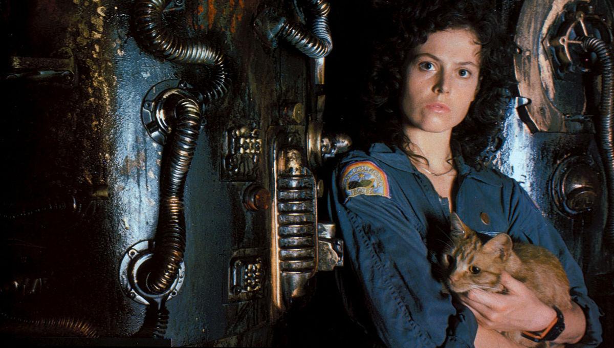 Sigourney Weaver and Jones the cat in Alien (1979)