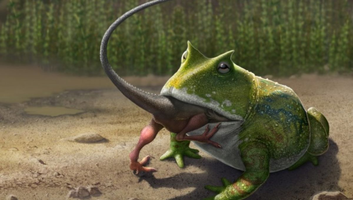 cretaceous-animals-4.jpg