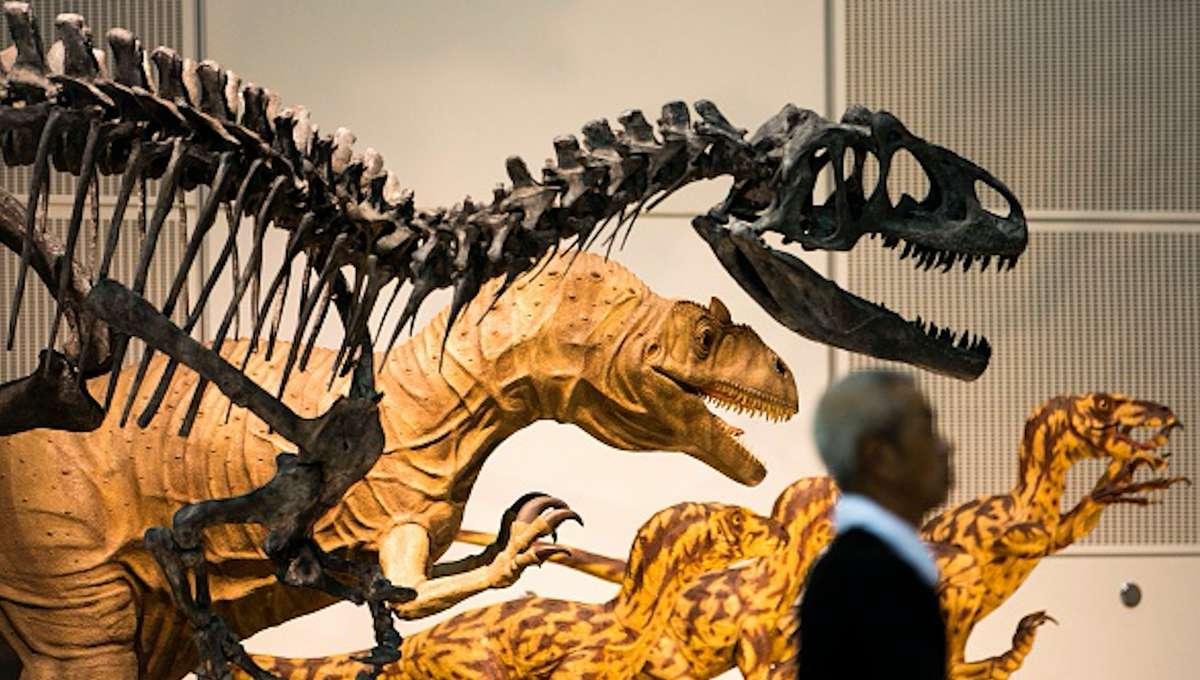 dinosaur_extinction.png