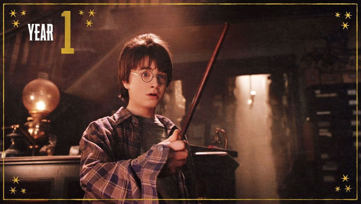 Harry Potter and the Sorcerer's Stone Year 1 graphic