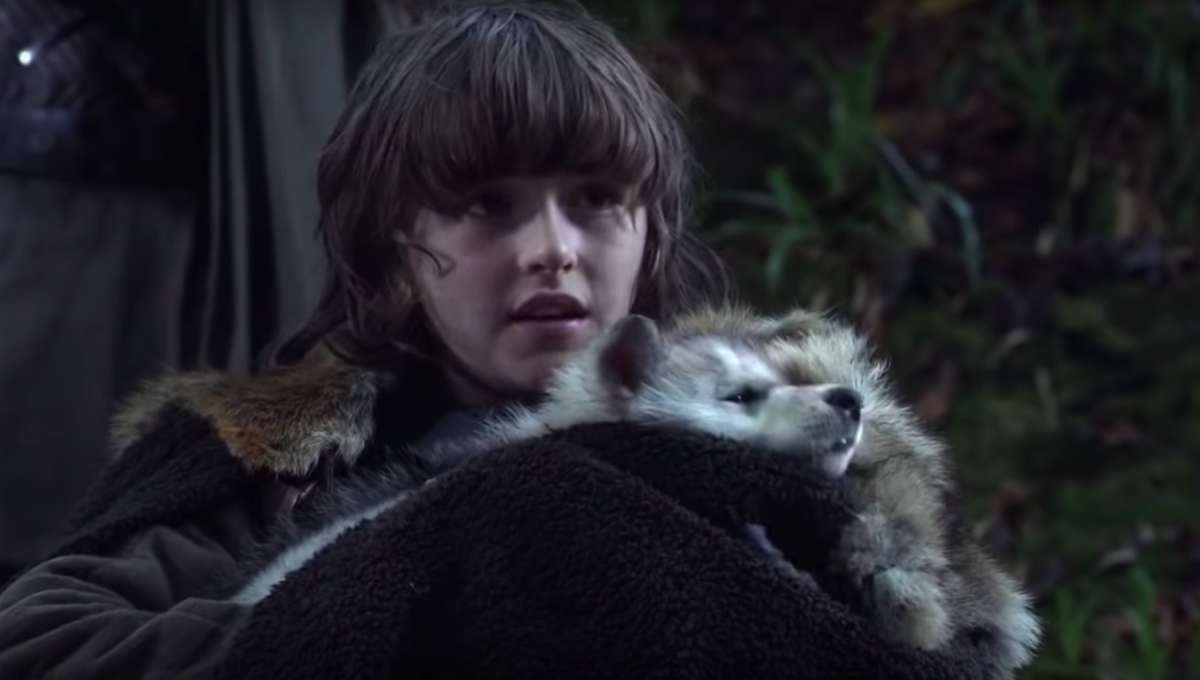 Bran Stark Dire-Wolf Game of Thrones
