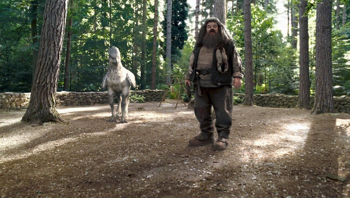 Hagrid and Buckbeak hero