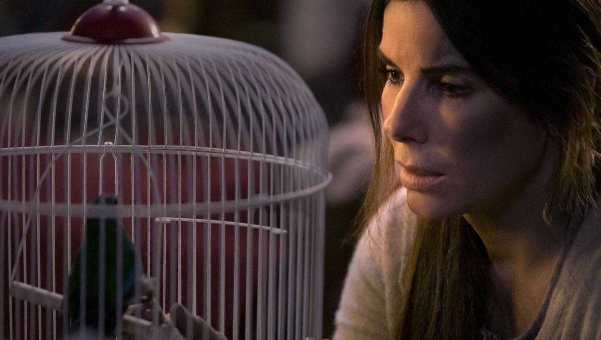 Bird Box Netflix Sandra Bullock