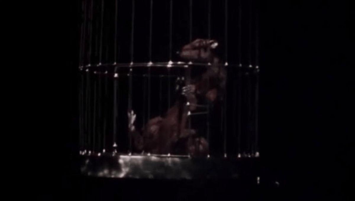 TMNT 1990 Rat Splinter