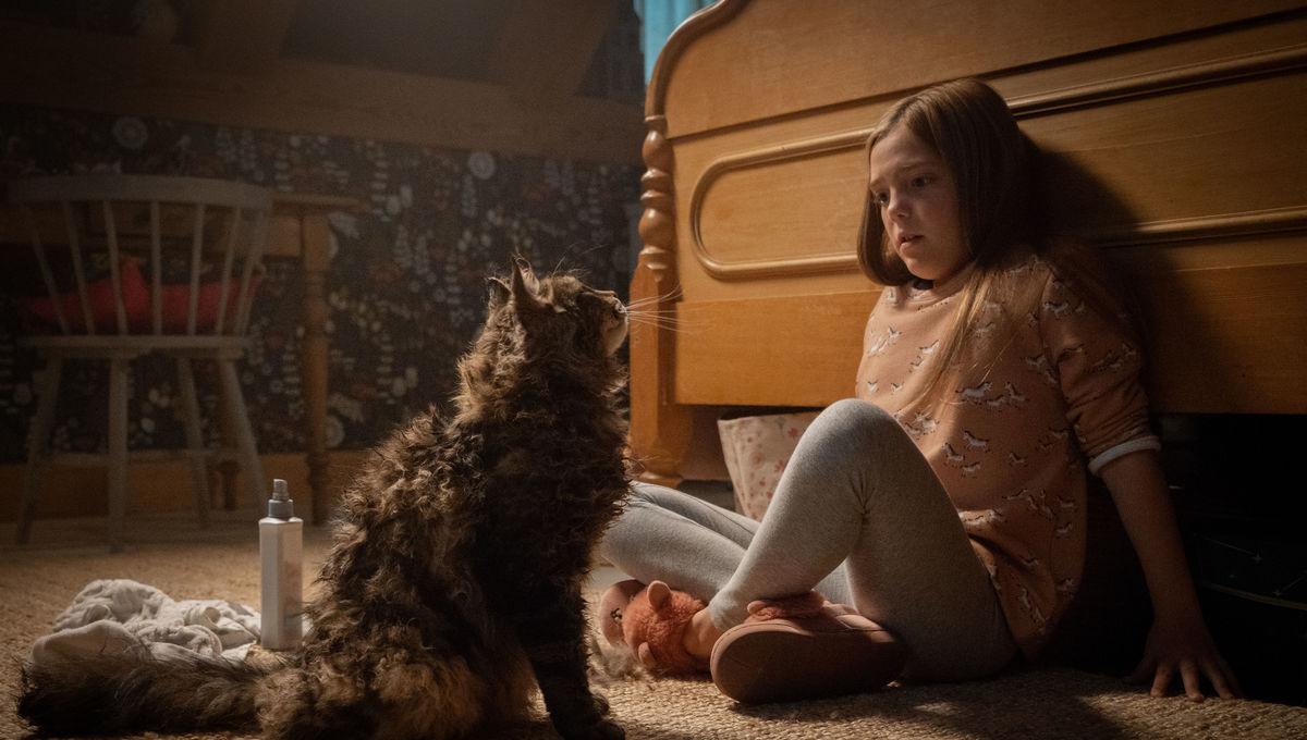Jeté Laurence Pet Sematary Ellie Creed