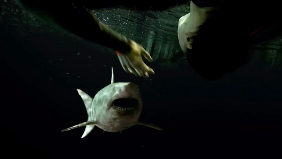 A shark attacks in horror sequel to 47 Meters Down