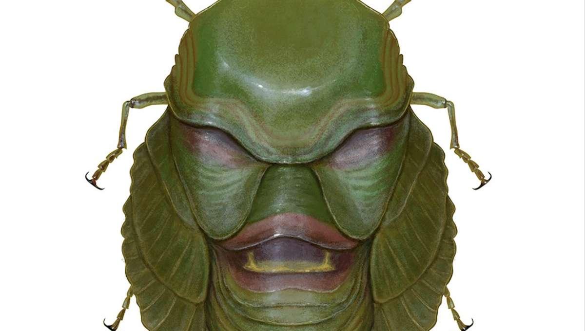 Bug Hero