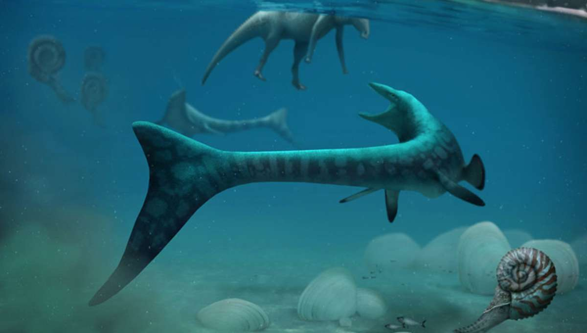 Miners In Alberta Uncover A Tylosaurus Fossil While Seeking Gemstones
