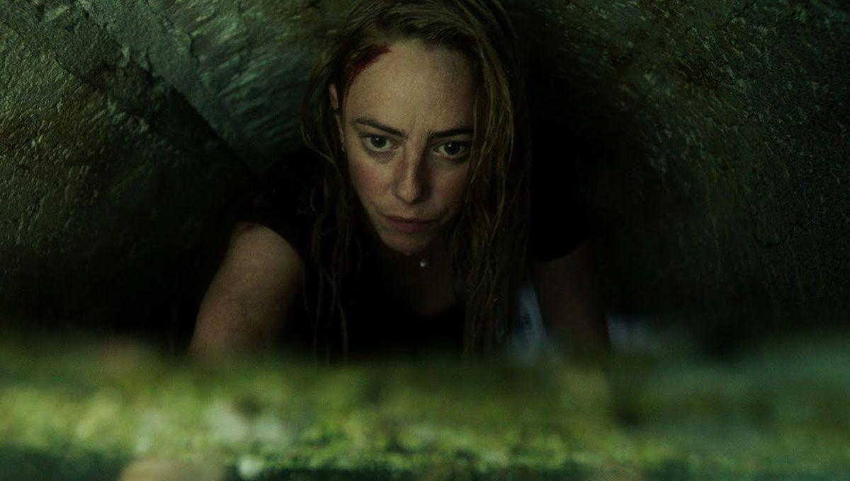 Kaya in Crawl