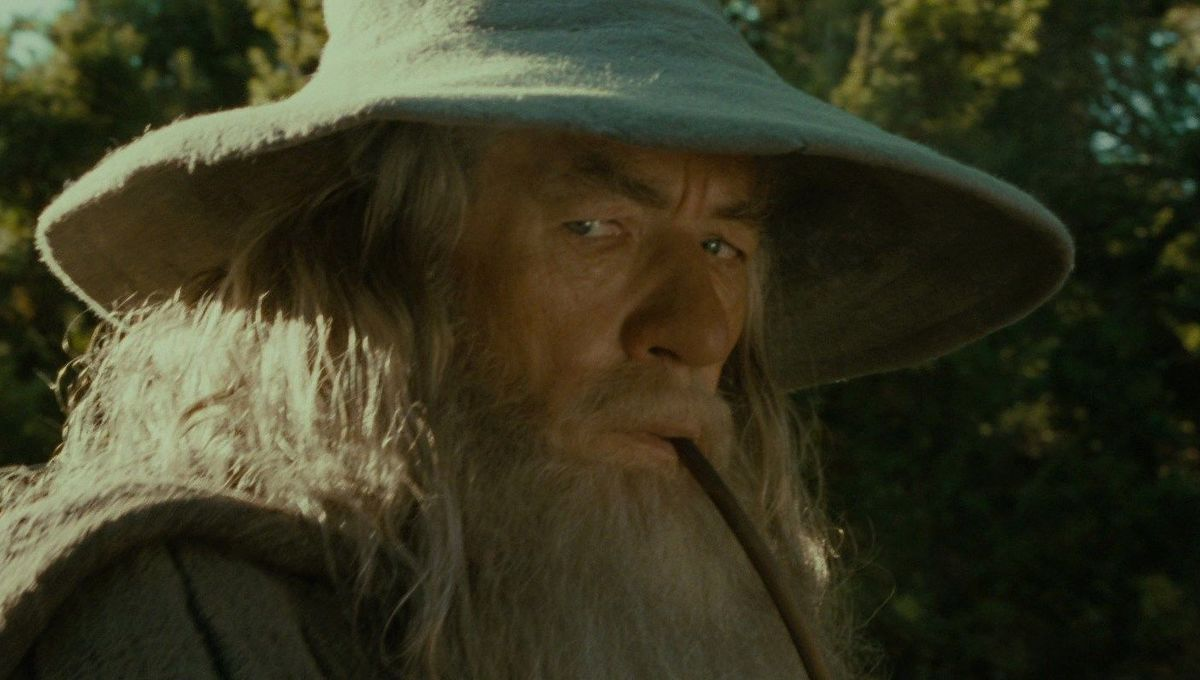 lord of the rings fellowship of the ring gandalf