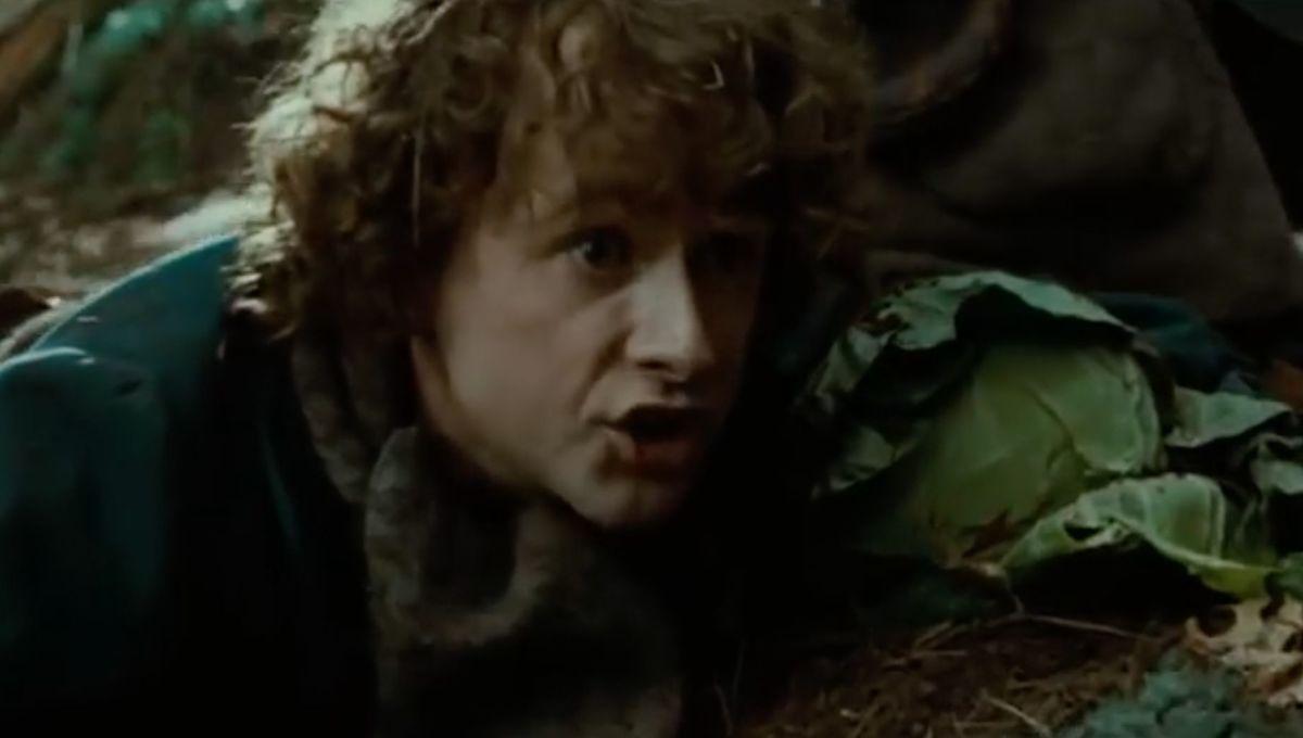 Billy Boyd (Peregrin Took)
