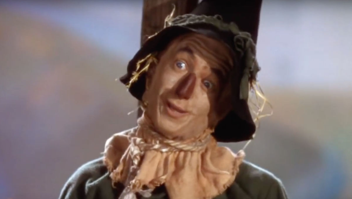 """Scarecrow """"If I only had a brain"""" Wizard of Oz"""