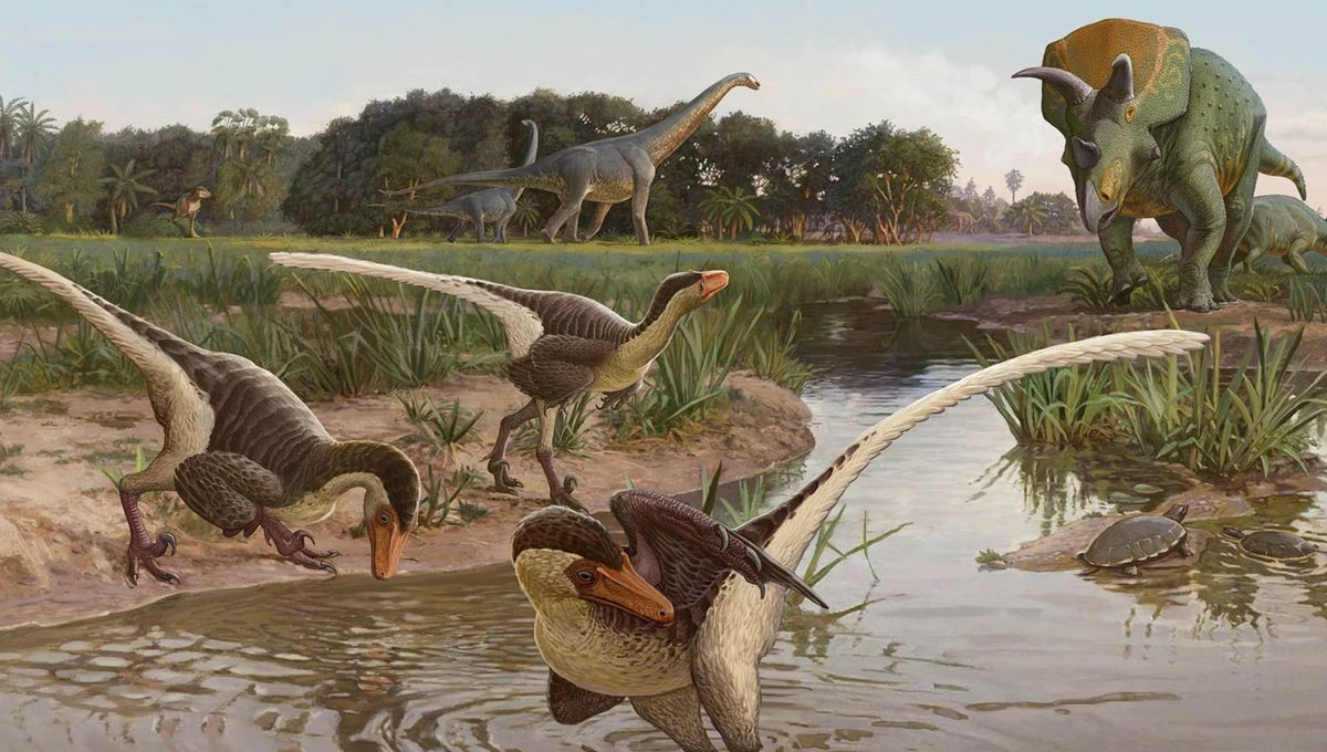 Feathered dinosaur found in United States is one of the last raptors