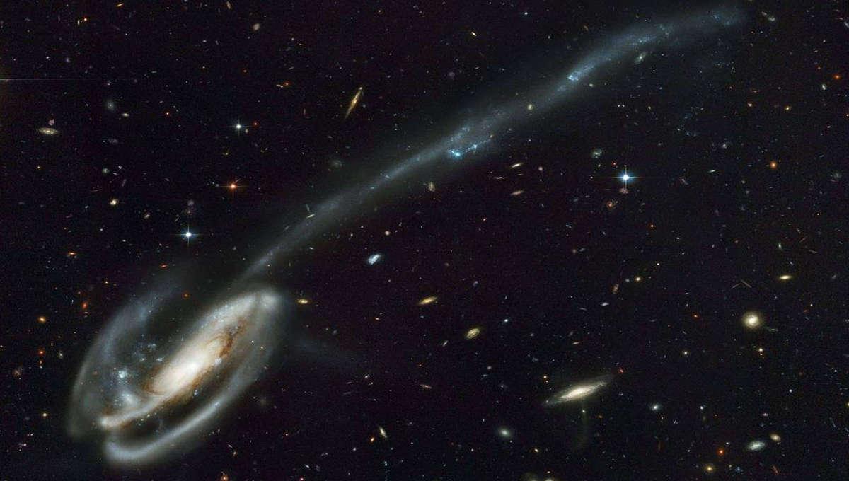 tidal tail of Tadpole galaxy