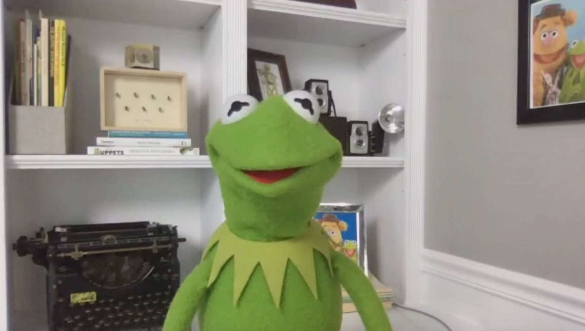 Kermit Muppets Now