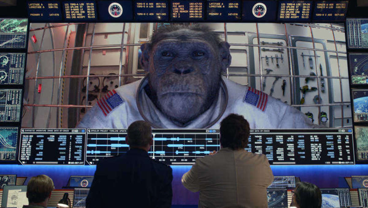 space force chimp