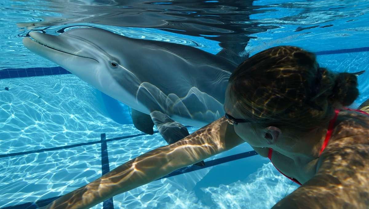 Edge Innovations Robot Dolphin