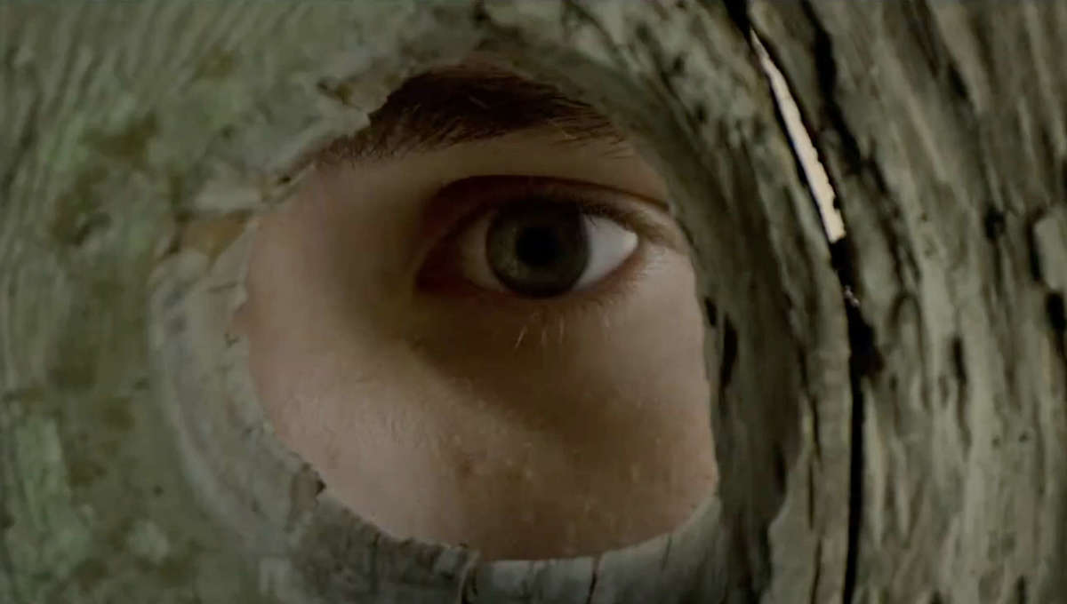 An eye peers through a fence in The Stand at CBS All Access
