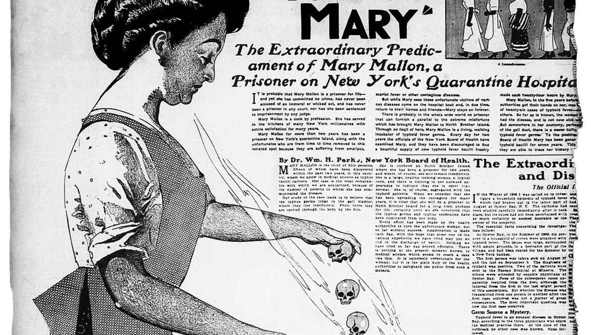 Typhoid Mary Wikimedia Commons