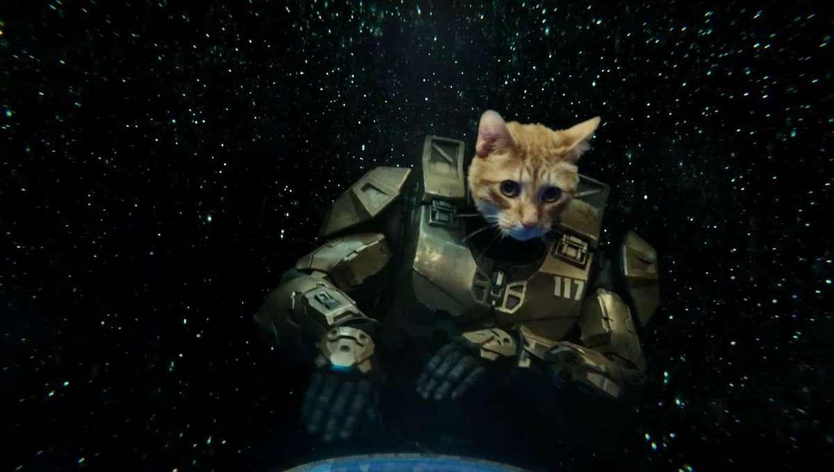 Master Chief cat Xbox Series X ad