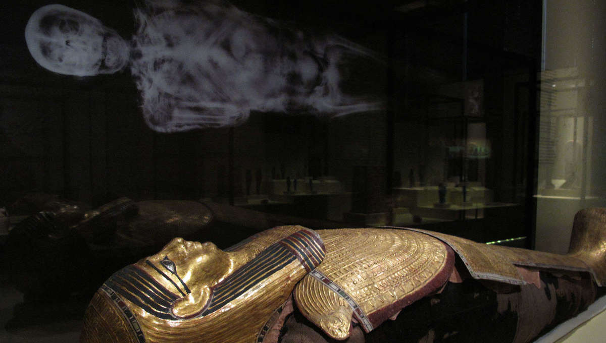 Egyptian mummy and scan