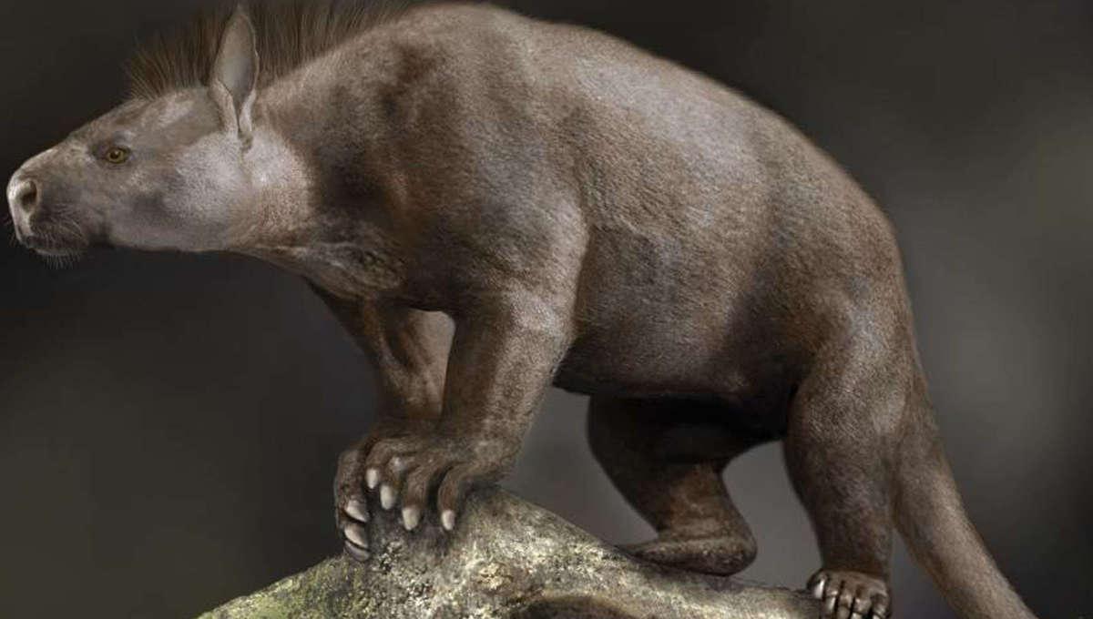prehistoric mammal