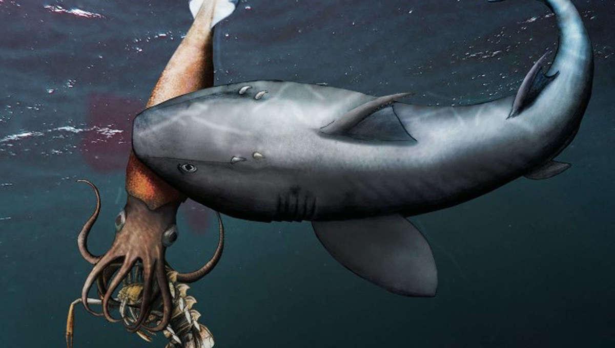 Jurassic shark, squid and crustacean