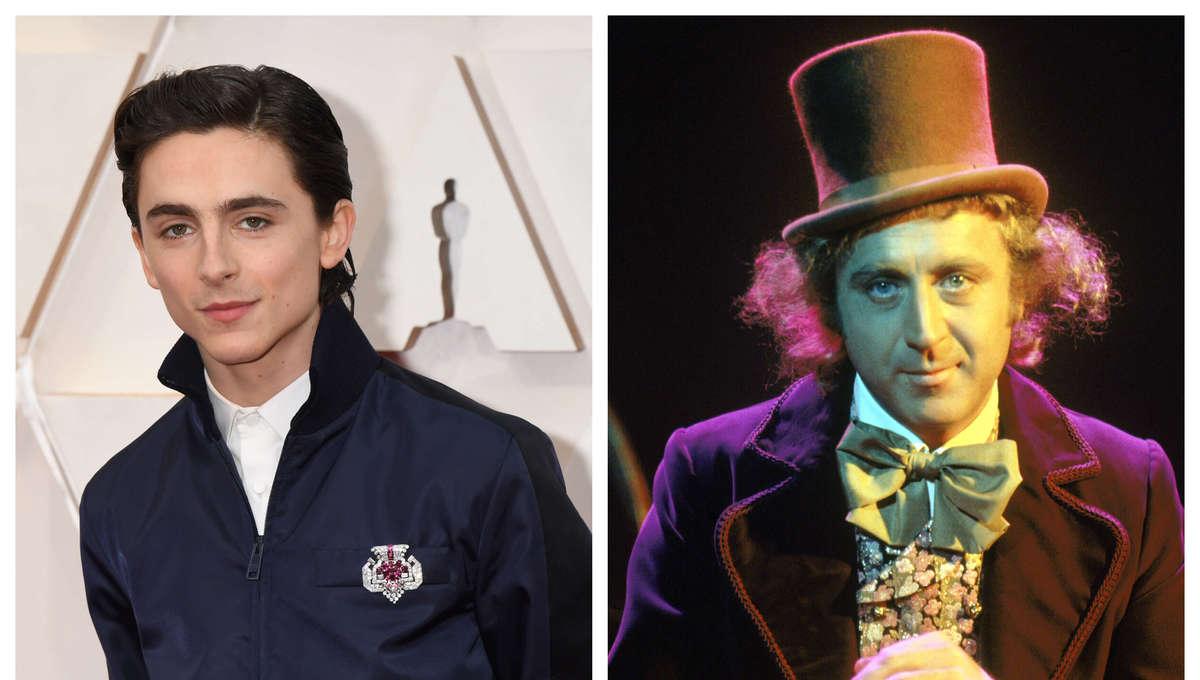 Timothee Chalamet Willy Wonka