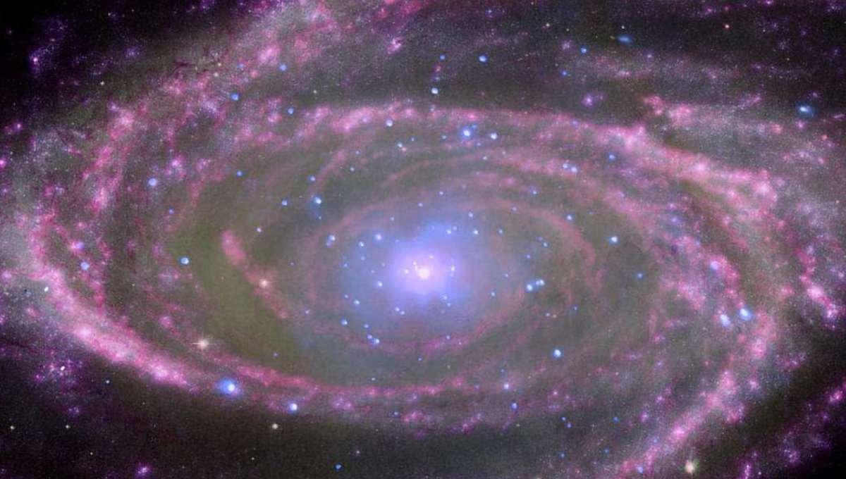 Liz Galaxy M81 Black Hole