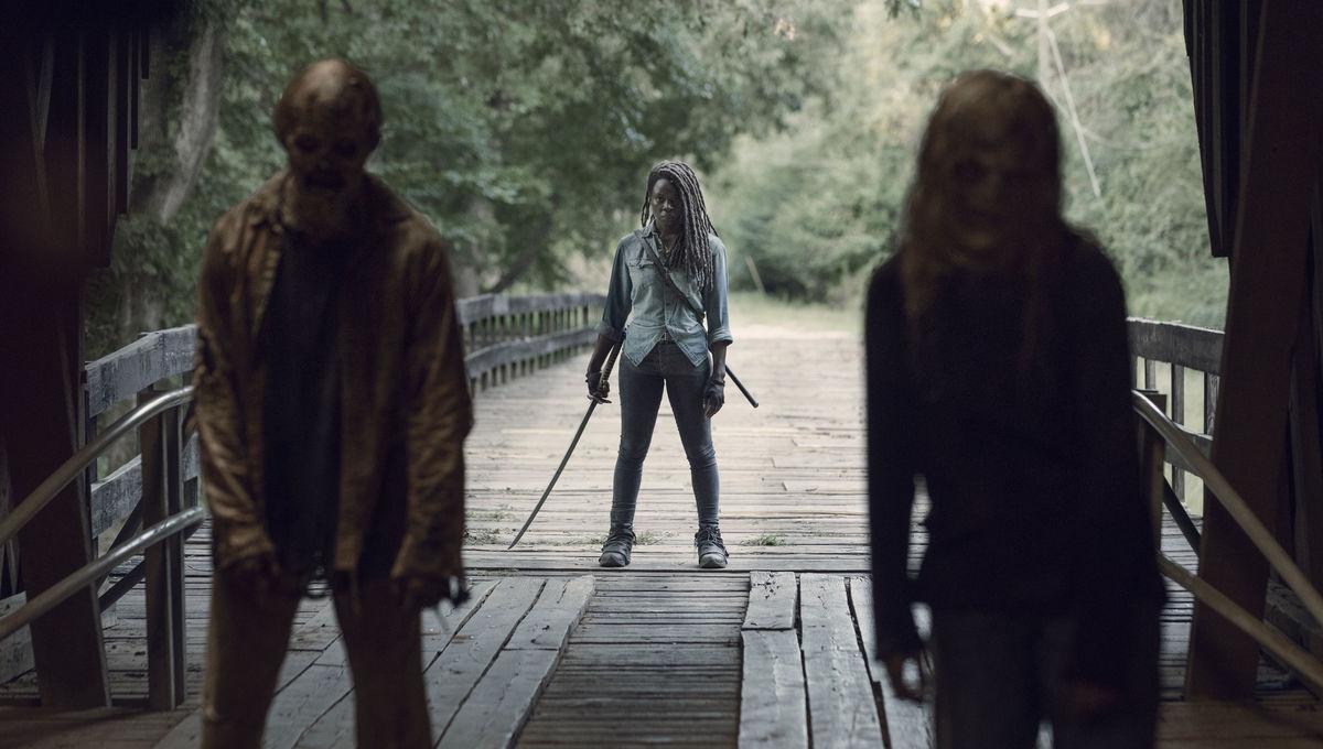 Danai Gurira as Michonne- The Walking Dead